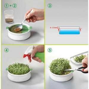 Vas de sticlă cu sită pentru germinarea semințelor mucilaginoase